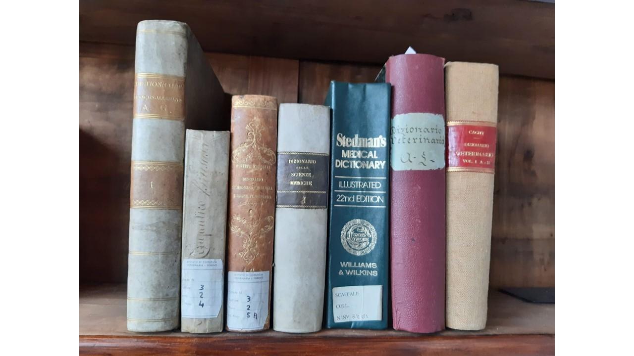 foto-libri-museo-1
